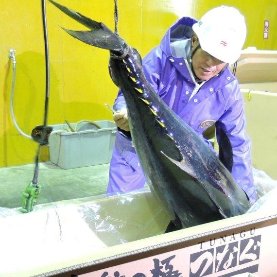 Tuna Business