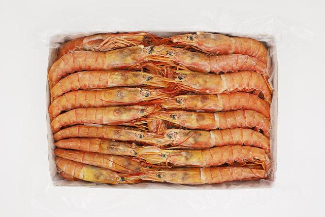 Argentina Red Shrimp