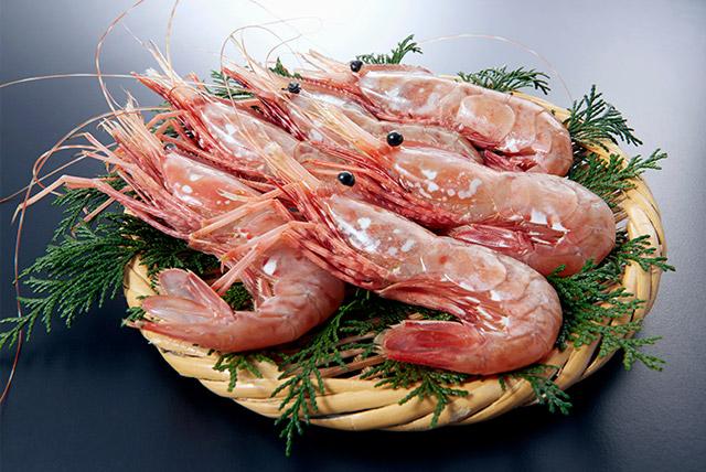 Spot Prawn Shrimp